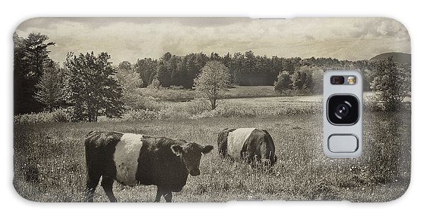 Cows Rockport Maine Galaxy Case