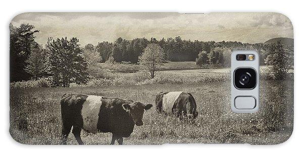 Cows Rockport Maine Galaxy Case