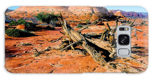 Coyote Buttes Galaxy Case