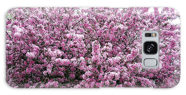 Crab Apple Tree Galaxy Case