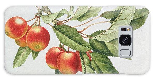 Crab Apples Galaxy Case by Sally Crosthwaite