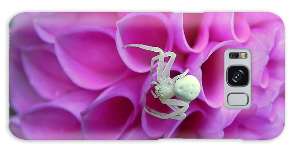 Crab Spider And Dahlia Galaxy Case