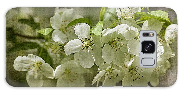 Crabapple Blossoms 4 With Textures Galaxy Case by Wayne Meyer