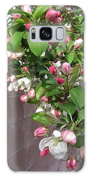 Crabapple Blossoms And Wall Galaxy Case by Donald S Hall
