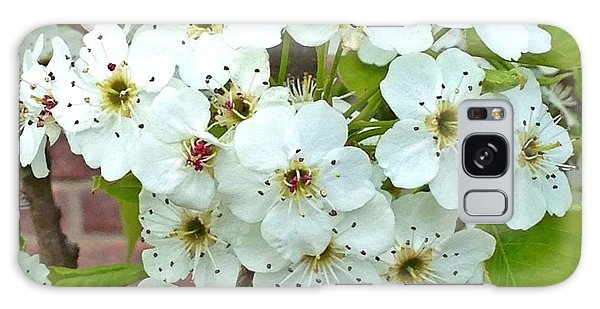 Crabapple Blossoms Galaxy Case