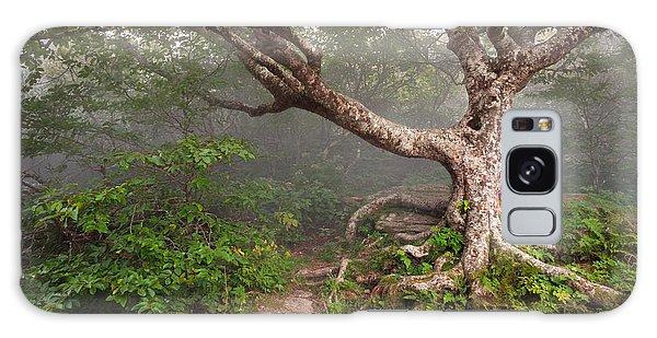 Craggy Gardens Blue Ridge Parkway Asheville Nc - Enduring Craggy Galaxy Case