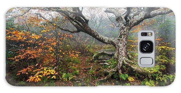 Craggy Gardens North Carolina Blue Ridge Parkway Autumn Nc Galaxy Case