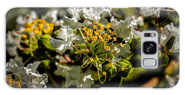 Crape Myrtle Blossoms And Flowers Galaxy Case