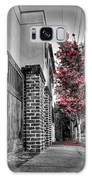 Crape Myrtles In Historic Downtown Charleston 2 Galaxy Case
