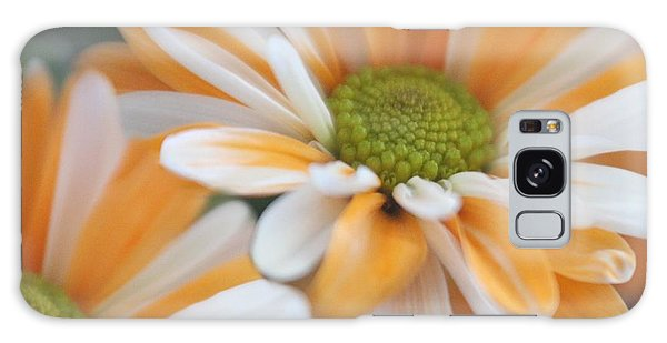 Creamsicle Daisies Galaxy Case by Mary Lou Chmura