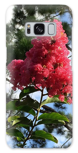 Crepe Myrtle And Mr. Pine Galaxy Case