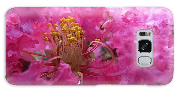 Crepe Myrtle In The Middle Galaxy Case