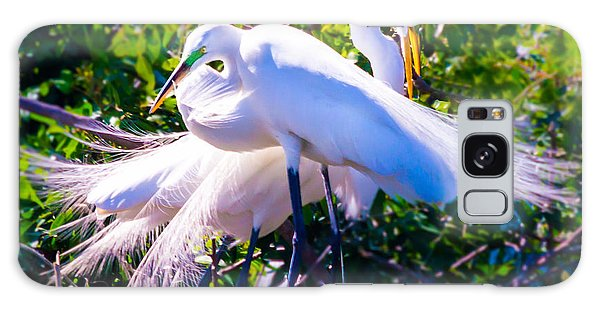 Criss-cross Egrets Galaxy Case