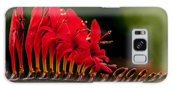 Crocosmia Galaxy Case