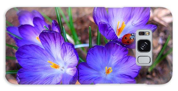 Crocus Flowers And Ladybug Galaxy Case by Debra Thompson