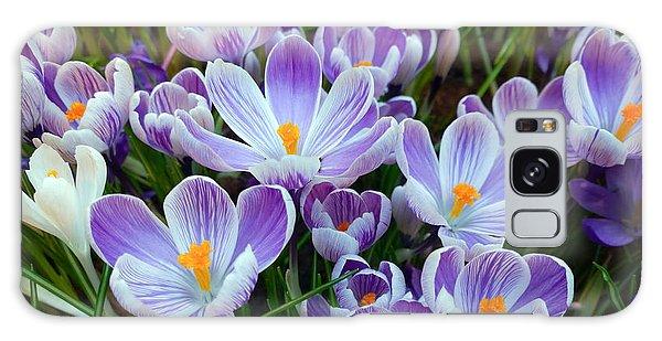 Crocus Flowers Galaxy Case
