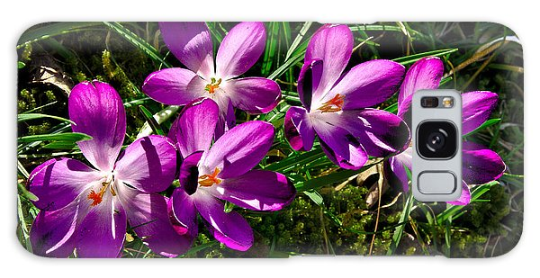 Crocus In The Grass Galaxy Case
