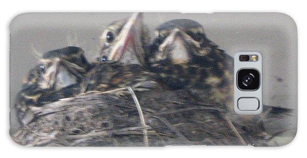 Crowded Nest Galaxy Case