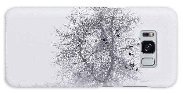 Crows On Tree In Winter Snow Storm Galaxy Case