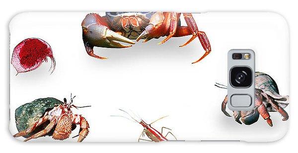 Crustaceans Galaxy Case by Wernher Krutein