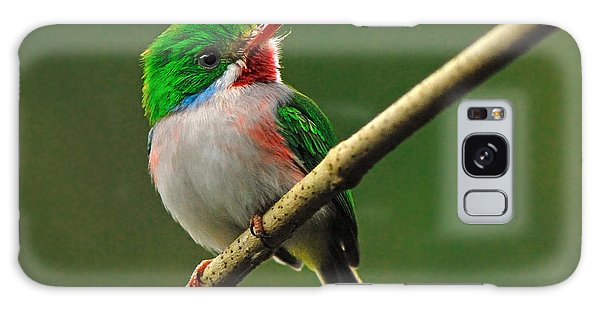 Cuban Tody Galaxy Case