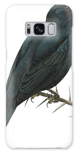 Cuckoo Galaxy Case - Cuckoo Shrike by Anonymous