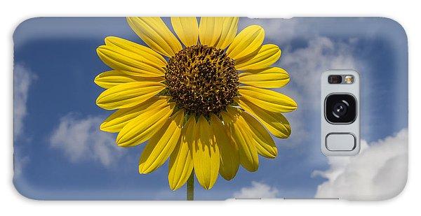 Cucumberleaf Sunflower Galaxy Case