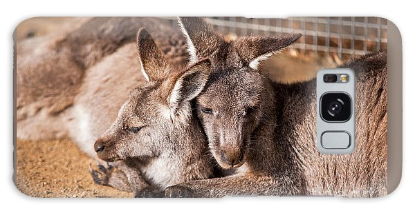 Cuddling Kangaroos Galaxy Case