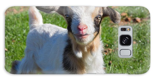 Curious Baby Goat Galaxy Case