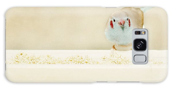 Curious Cordon Bleu Finch  Galaxy Case