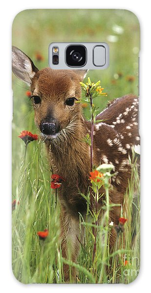 Curious Fawn Galaxy Case by Chris Scroggins