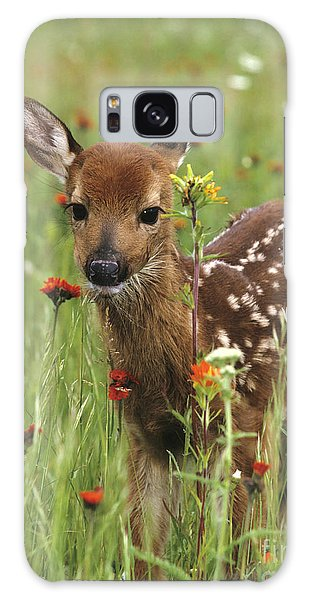 Curious Fawn Galaxy Case