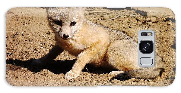 Curious Kit Fox Galaxy Case