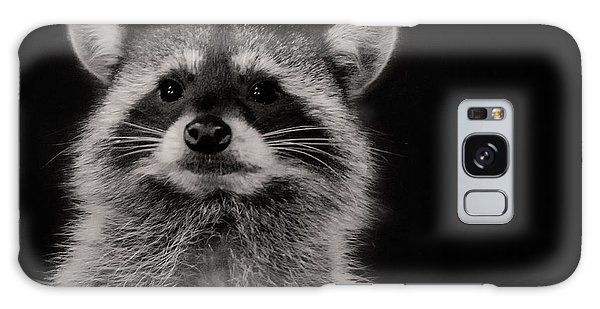 Curious Raccoon Galaxy Case by Linda Villers