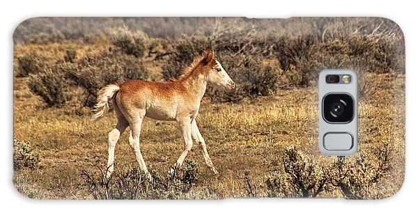 Cute Colt Wild Horse On Navajo Indian Reservation  Galaxy Case