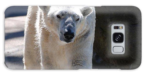 Cute Polar Bear  Galaxy Case by DejaVu Designs
