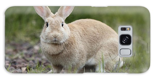 Cute Rabbit Galaxy Case by Craig Dingle