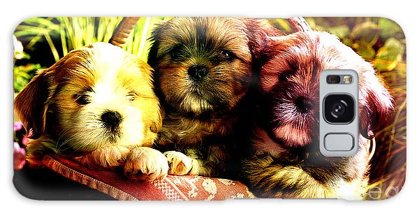 Cute Terrier Puppies Galaxy Case