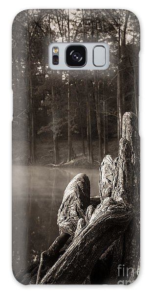 Cypress Knees In Sepia Galaxy Case