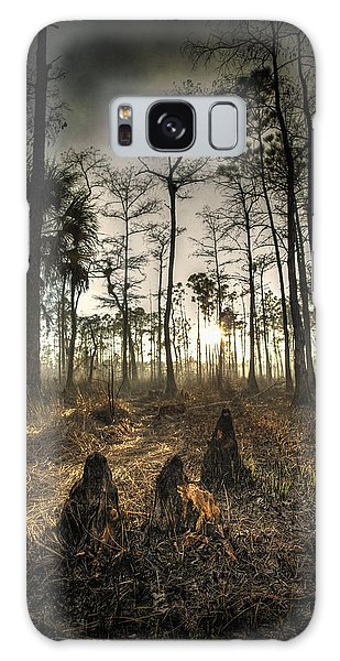 Cypress Stumps And Sunset Fire Galaxy Case by Bradley R Youngberg
