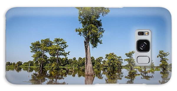 Cypress Tree Covered In Spanish Moss Galaxy Case
