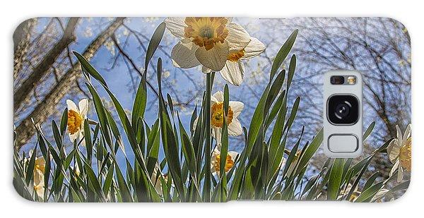 Daffodil Sun Galaxy Case