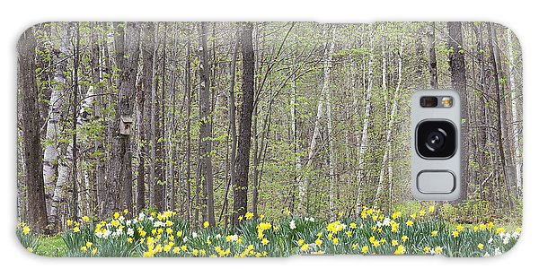 Daffodil Woods Galaxy Case