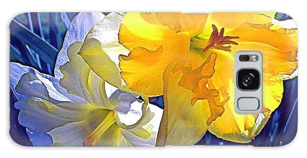 Daffodils 1 Galaxy Case by Pamela Cooper