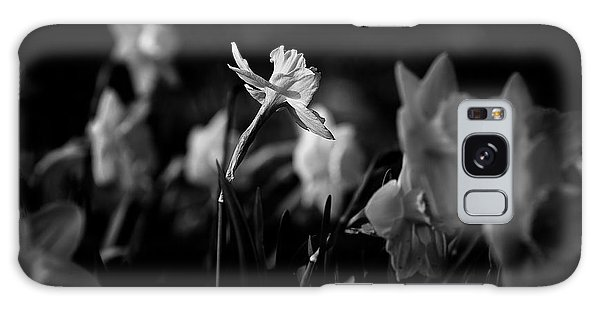 Daffodils In Black And White Galaxy Case