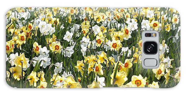 Daffodils Galaxy Case by Lana Enderle