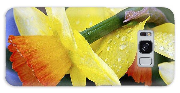 Daffodils With Rain Galaxy Case by Joe Schofield