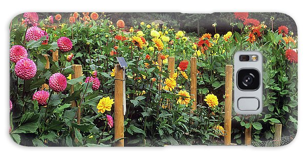 Fence Post Galaxy Case - Dahlia Flower Trials by Anthony Cooper/science Photo Library