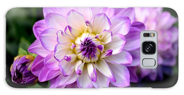 Dahlia Flower With Purple Tips Galaxy Case