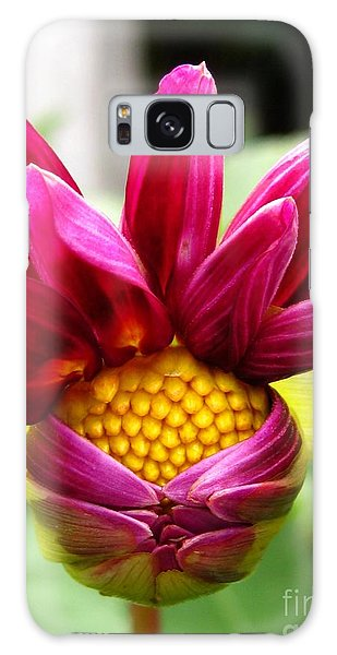 Galaxy Case - Dahlia From The Showpiece Mix by J McCombie
